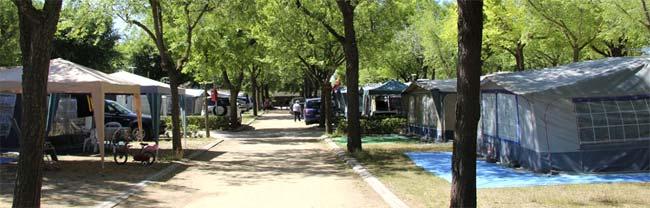 Alquiler de parcelas en camping