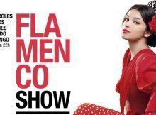 Flamenco show en Barcelona
