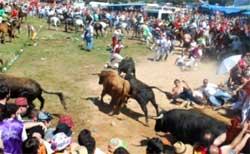 La Saca Fiestas de Sanjuan Soria
