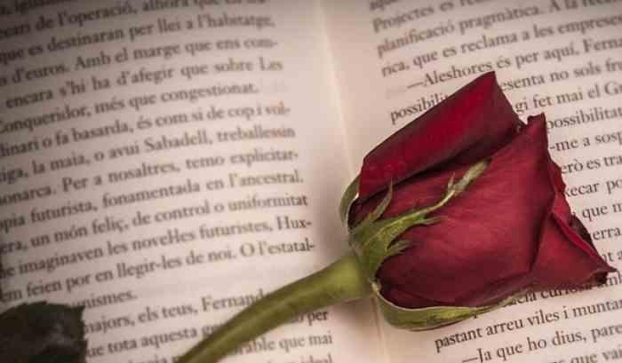 Día de la rosa y el libro